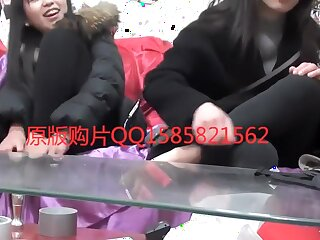 nylon paws Close-up (Chinese)